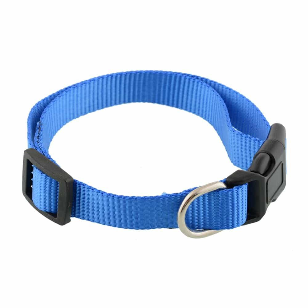 nylon dog collar detail
