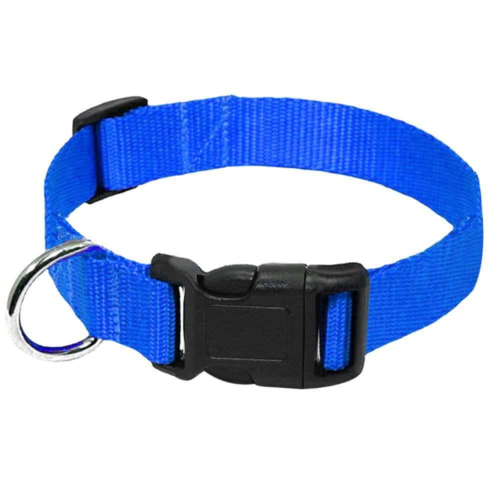 nylon dog collar blue