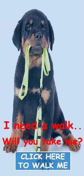 walk-me-pic