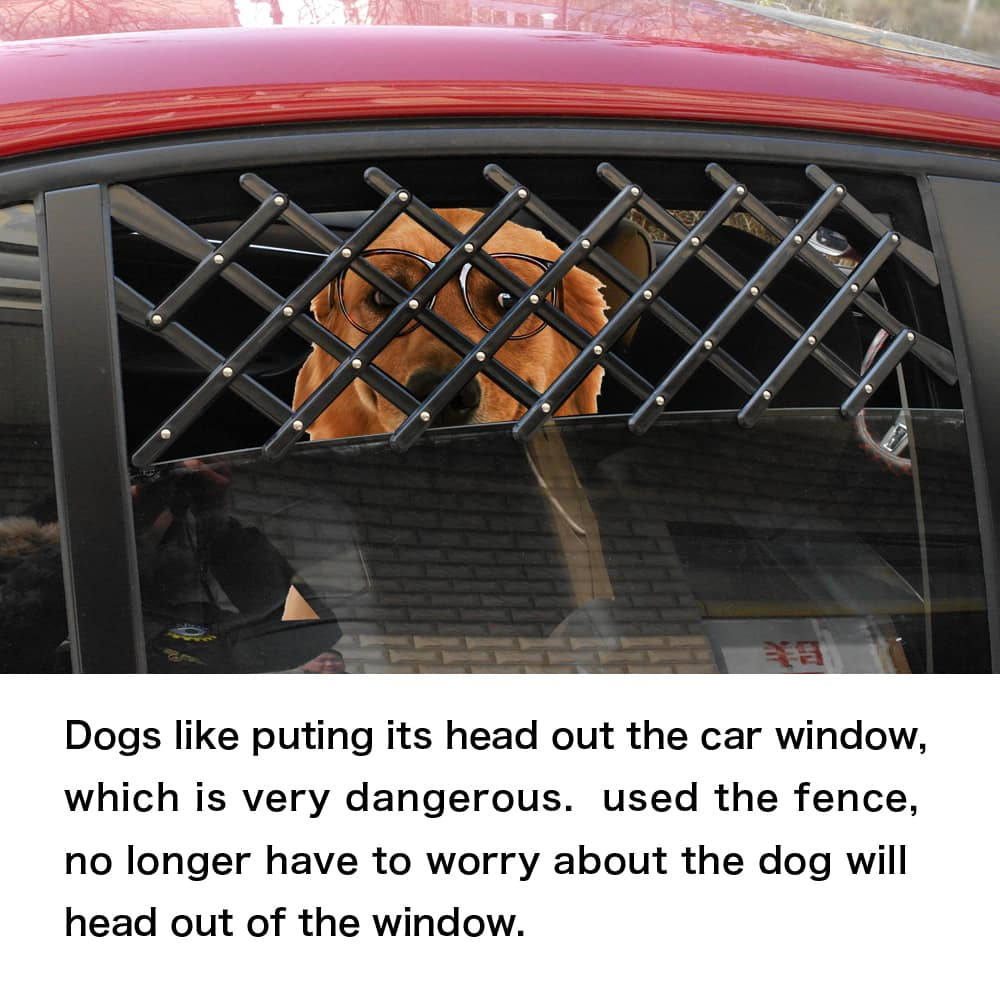 window guard